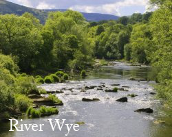 River Severn at Caersws